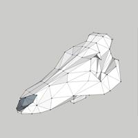 3d skull maquette
